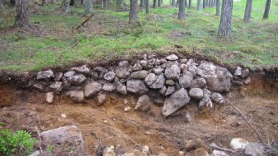 Ett stenröse i skogen