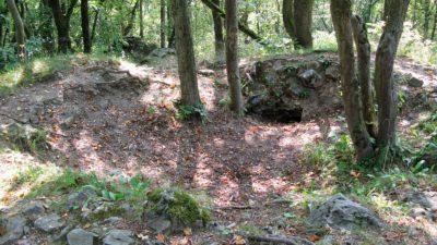 Ruiner av ett torn i en skog