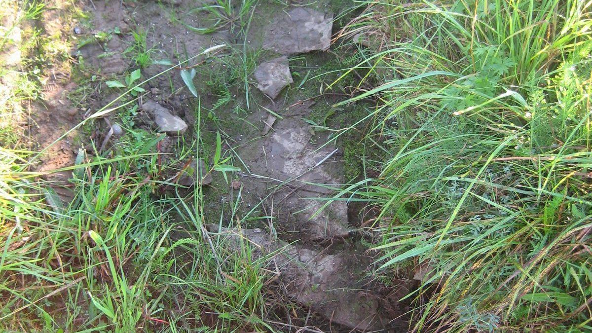 Syllstensraden som hittades i ett dike