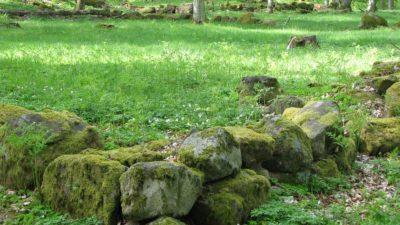 Hörn av den inhägnade trädgården i Dannäs socken