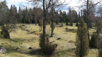 Vallgårda by - ett välbevarat fossilt odlingslandskap