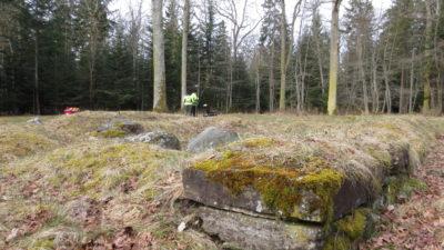 Två personer står i skogen med arkeologisk utrustning.
