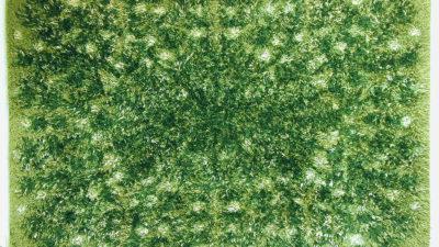 En grön ryamatta