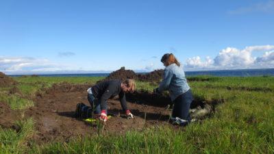 Två personer gräver på ett grönt fält. Fint väder med blå himmel.