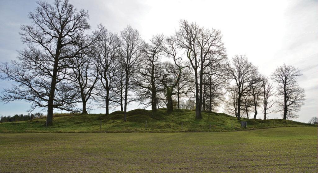 """""""Tempelbacken"""", höggravfält från järnåldern bakom Prästgården."""