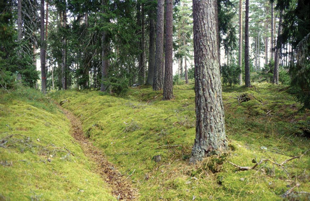 Hålvägar ingående i Eriksgatuleden i Sandhem.