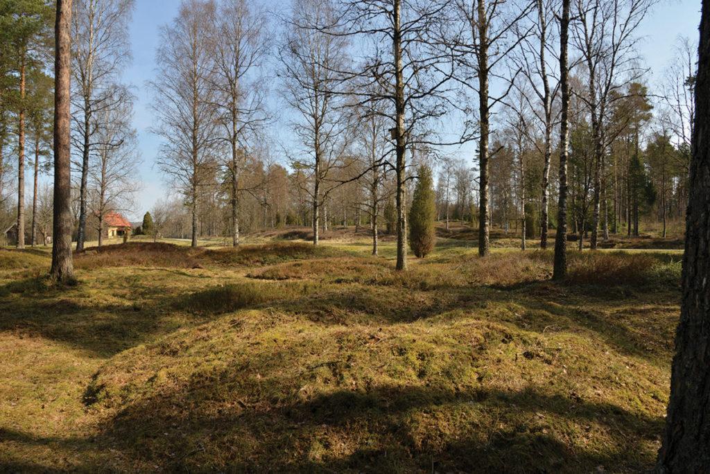 Ett vikingatida gravfält med drygt 150 gravar i form av högar och stensättningar.
