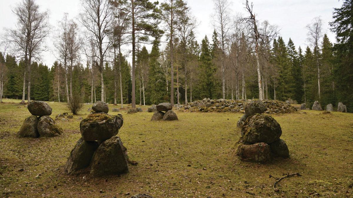 Fagertoftagravfältet. I förgrunden krets av järnåldersdösar.