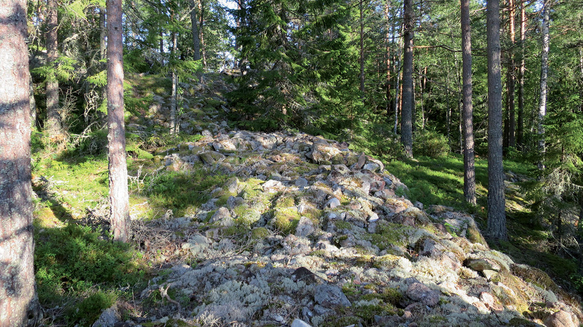 Delar av stenmuren i fornborgen.
