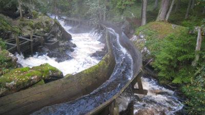 En restaurerad flottningsränna mitt i skogen. I rännan forsar det vatten.