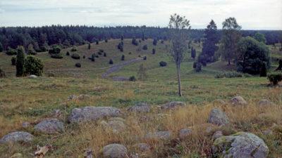 Landskapsvy från ett av gravrösena.