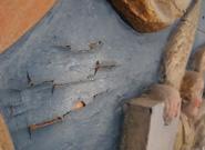 Ett blåmålat parti där färgen släppt och rest sig i långa böljande sprickor.