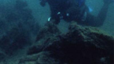 En person under vatten iklädd våtdräkt och som har dykarutrustning.