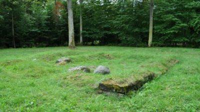 En mark med grönt gräs med några stenar. Runt omkring står det granar.
