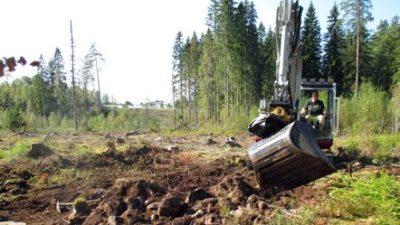 En person i en grävmaskin gräver med grävskopan på en avverkad stenig yta. Gles skog syns i bakgrunden.