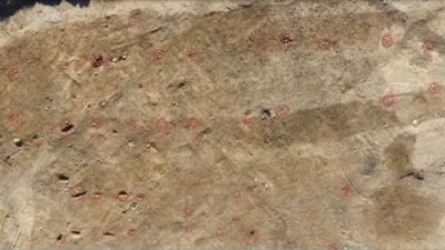 Brun lätt flammig jordyta sedd ovanifrån. Ett tjugotal svagt röda ringar i en sorts korridorform syns.