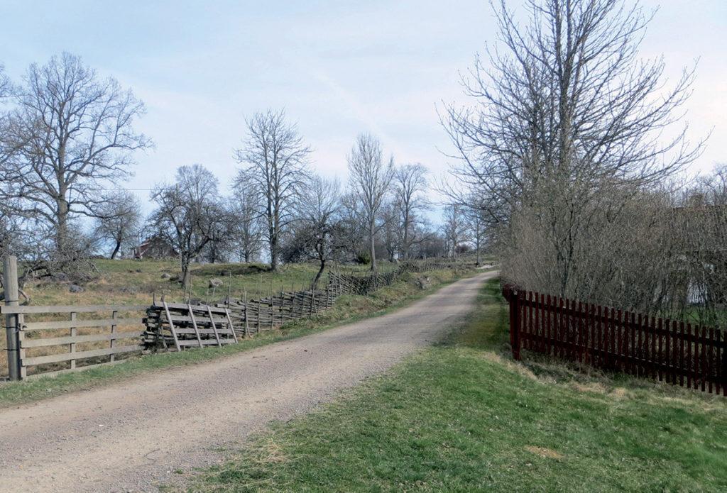 Foto över gammal bytomt som övergas omkring 1820.
