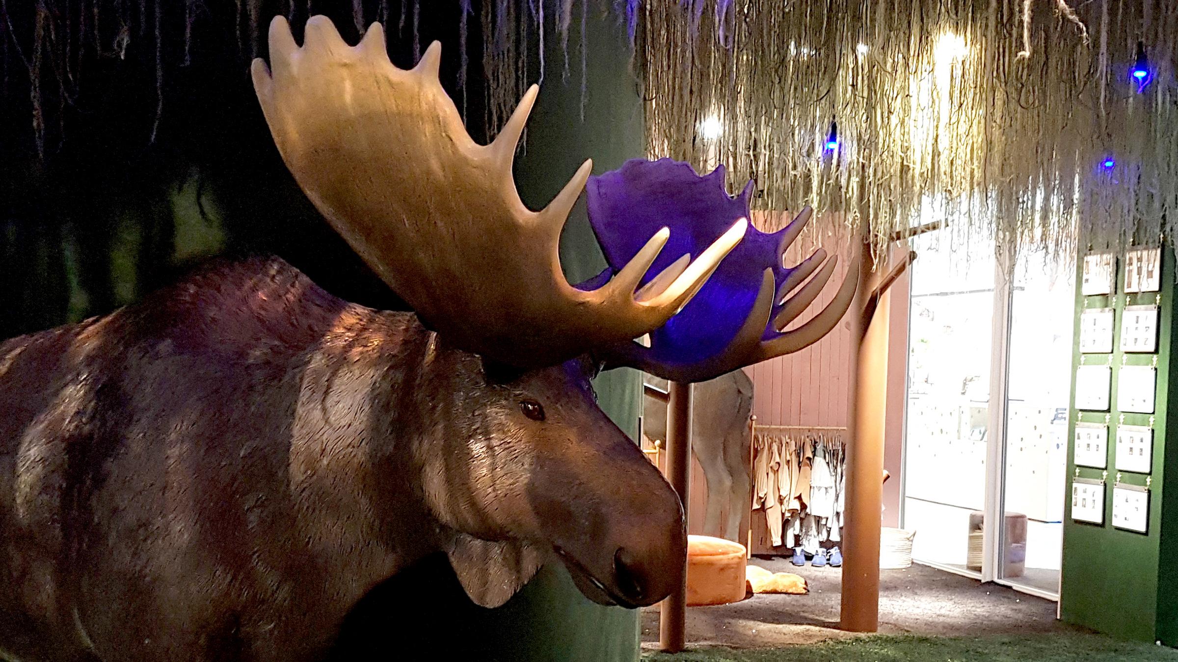 Följa John - en utställning på Jönköpings läns museum