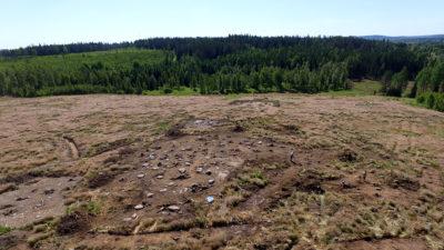 Drönarbild som visar gravfält och omgivande skog ovanifrån.