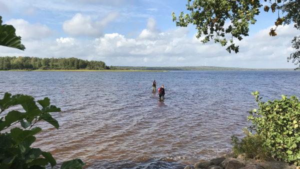 En dykare och en person i vadarbyxor står en bit ut i vattnet i en skogssjö.