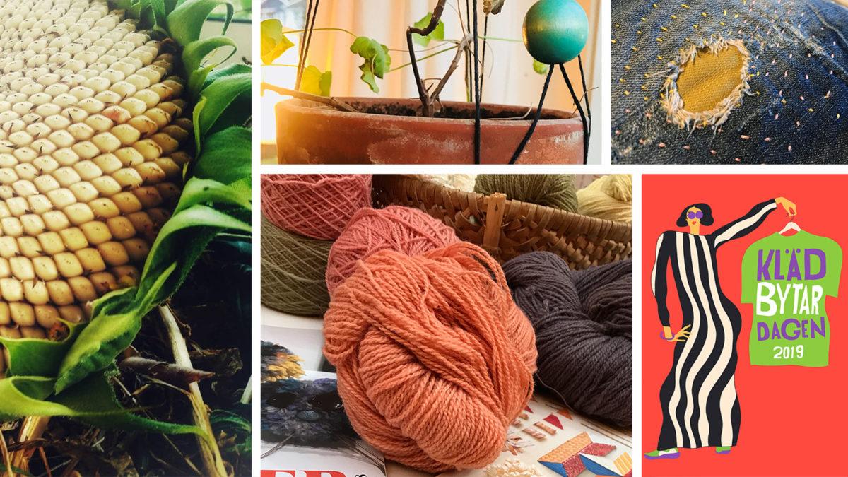 Ett collage med växter, ampel i makramé, illustration med texten klädbytardagen, samt garner