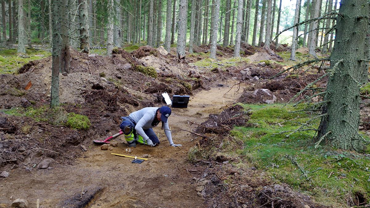 En arkeolog gräver i skogen