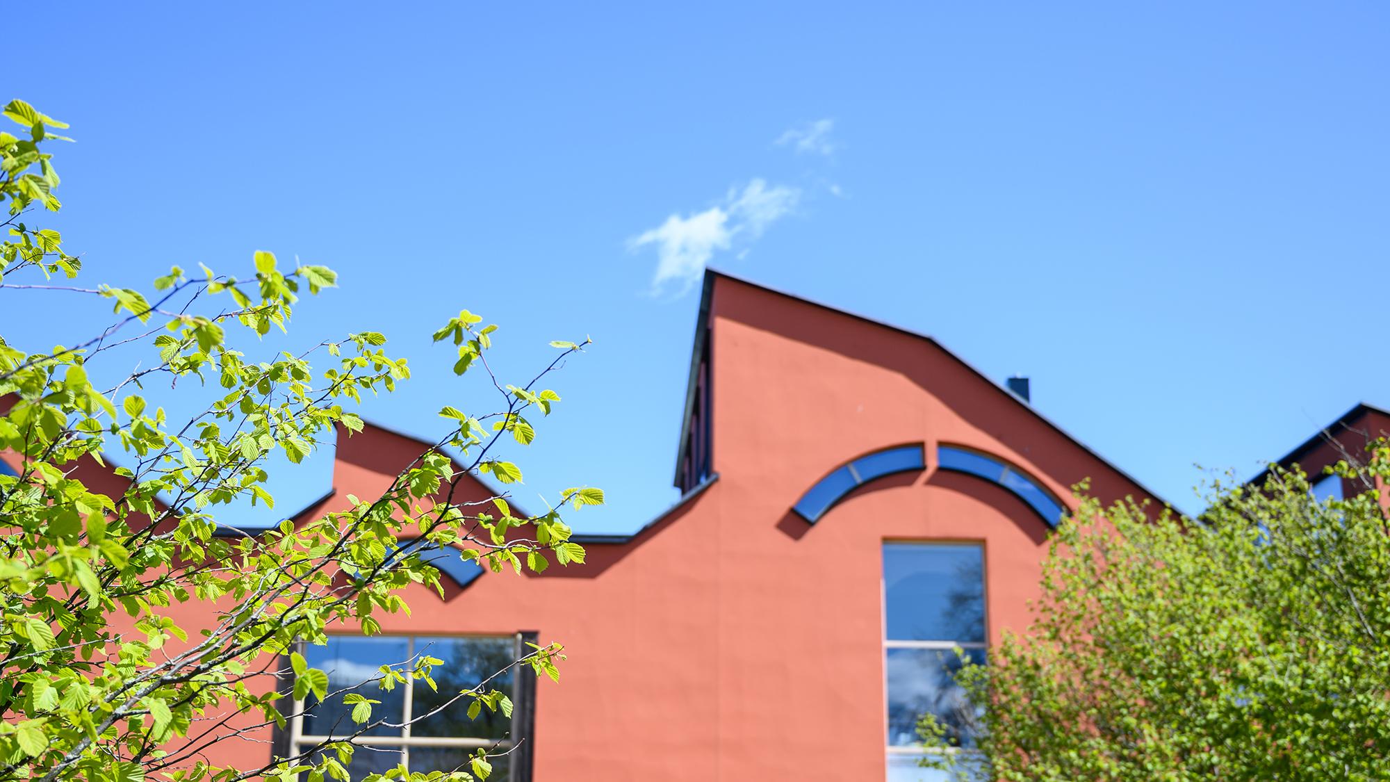 Museibyggnaden mot en blå himmel med ljusgröna kvistar i förgrunden