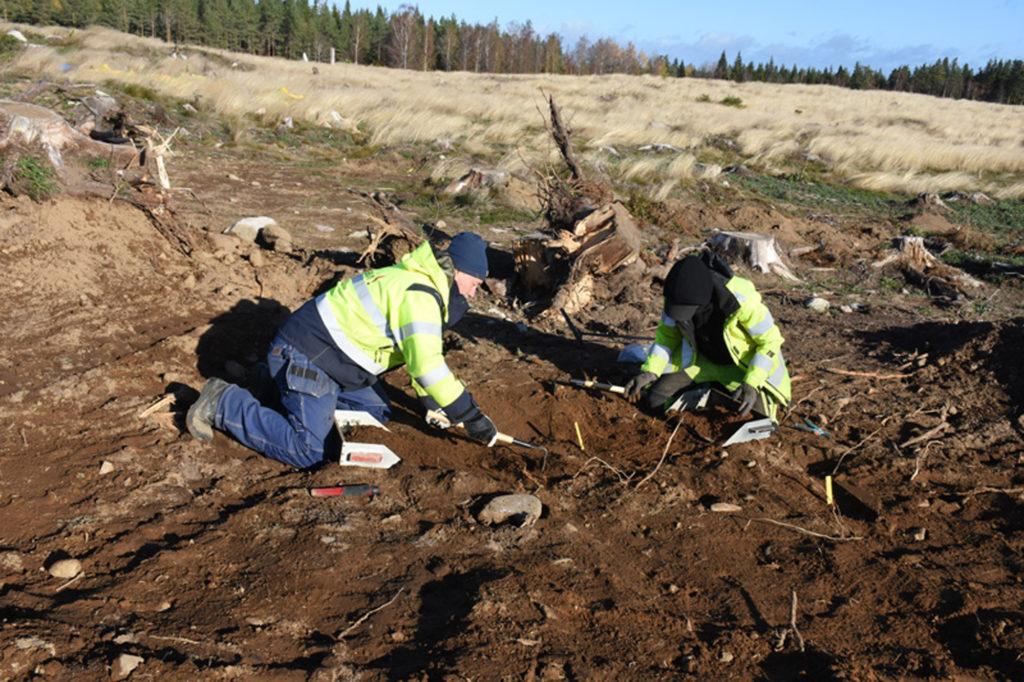 Två arkeologer gräver ute på ett fält
