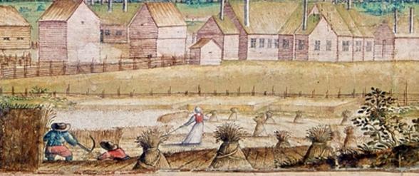 En äldre illustration som visar skörd/slåtter vid en gård