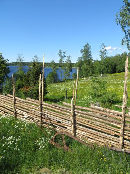 En gärdsgård i ett sommarlandskap